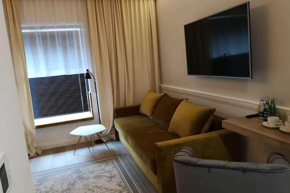 Deluxe Studio Suite - Living Area
