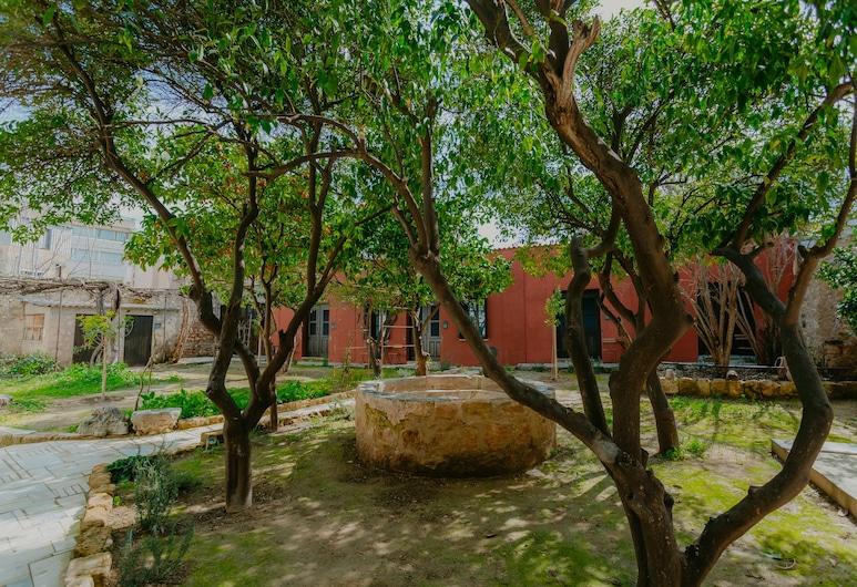 Casa Mespilea Guest House, Paphos, Ogród