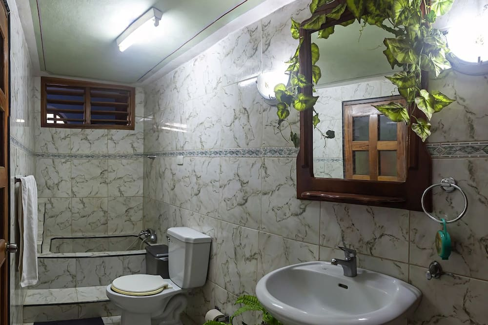 Economy Dört Kişilik Oda, 2 Büyük (Queen) Boy Yatak, Avlu Manzaralı - Banyo