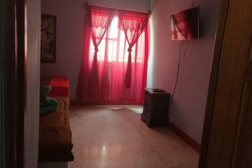 Kambarys su patogumais, 1 standartinė dvigulė lova - Televizija