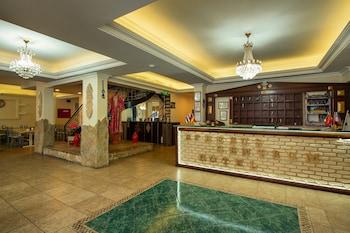 在塞尔丘克的艾菲索斯中央酒店照片