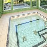 Studio, 1 Schlafzimmer, Whirlpool (Greystone Lodge 314&315) - Pool
