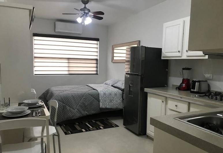 LOFTS DE LA CALLE HUMBOLDT I, Monterrey, Departamento 2, Habitación