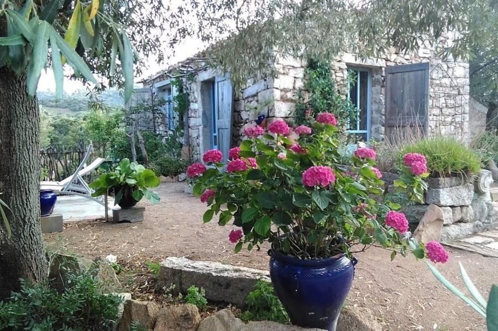 Doppel- oder Zweibettzimmer, Gartenblick (GINEPRO) - Terrasse/Patio