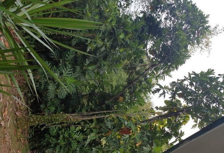 Guam Jungle House +++, 요나, 숙박 시설 부지