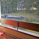 開放式客房 - 陽台