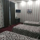 Trivietis kambarys su pagrindiniais patogumais, 3 viengulės lovos - Svetainės zona