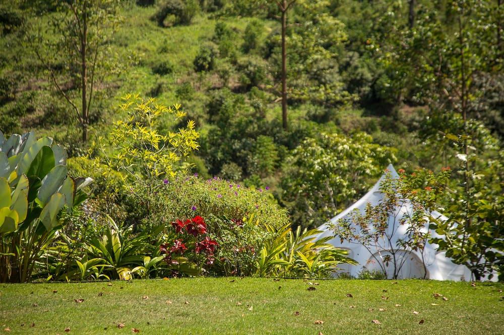 Signature Lotus Belle Tent Two Twin Beds - Vaizdas į kiemą