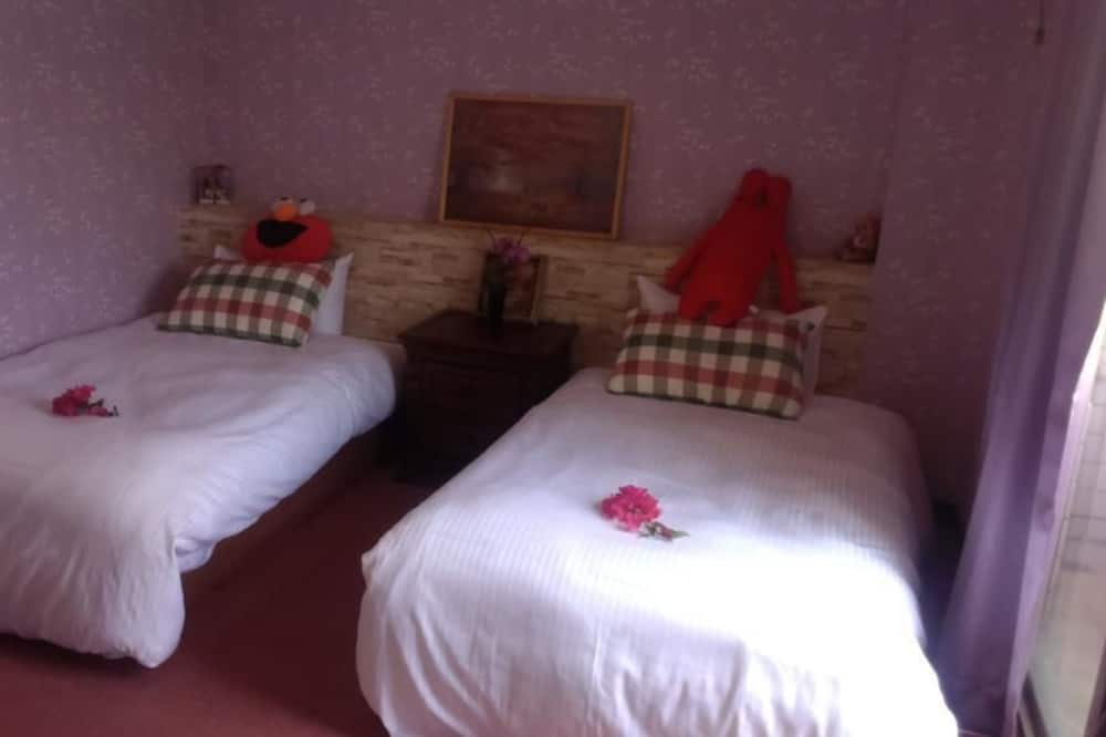 Pokój z 2 pojedynczymi łóżkami - Łazienka