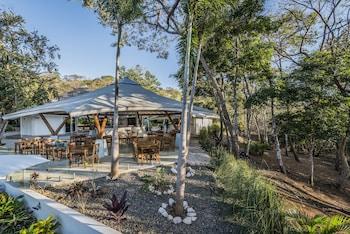 Picture of Mikado Natural Lodge in Tamarindo