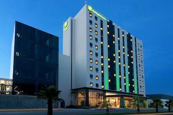 阿波達卡蒙特雷阿波達卡區機場套房假日飯店的相片