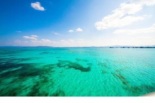 Okinawan
