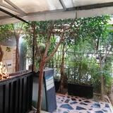 Екстер'єр