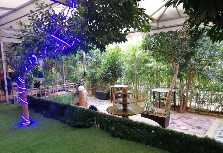Senhaja Hotel - Hostel, Sefrú, Terraza o patio