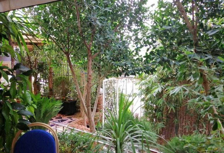 森哈加酒店 - 青年旅舍, 塞夫魯, 外觀