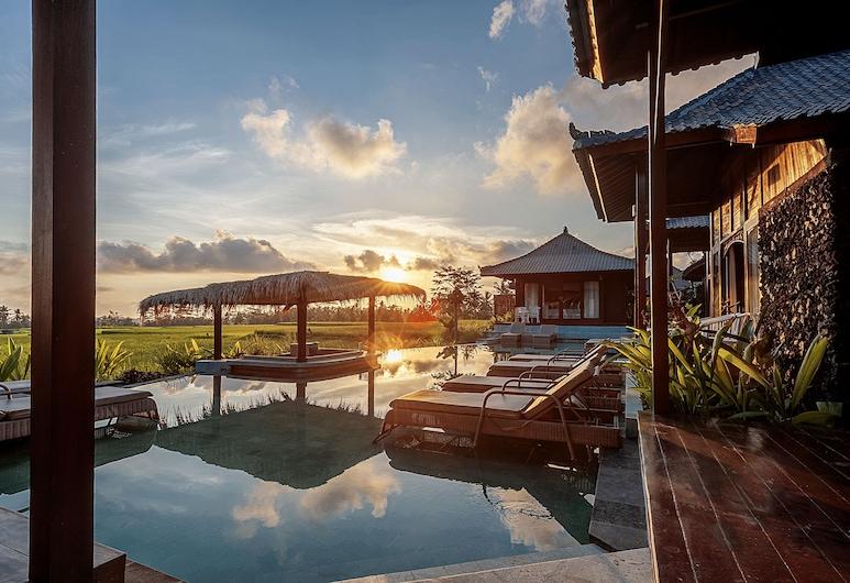 Kayangan Villa Ubud , Tegallalang, Panoráma medence