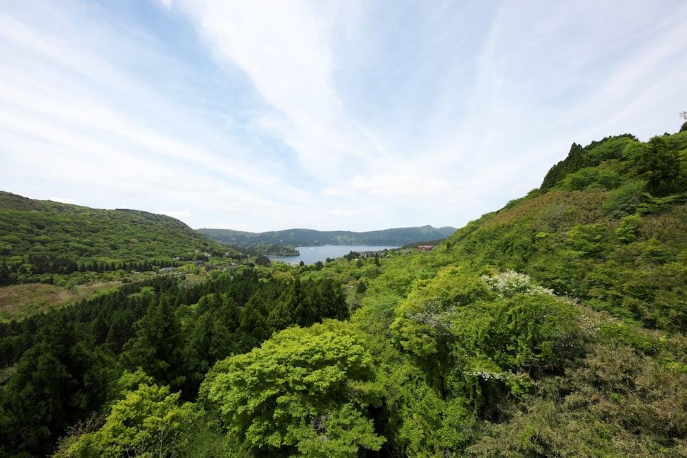 Habitación con 2 camas individuales, para no fumadores, vista a la montaña (Japanese Style) - Vista a la montaña