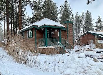 大熊湖Cozy Bear Lodge A的圖片