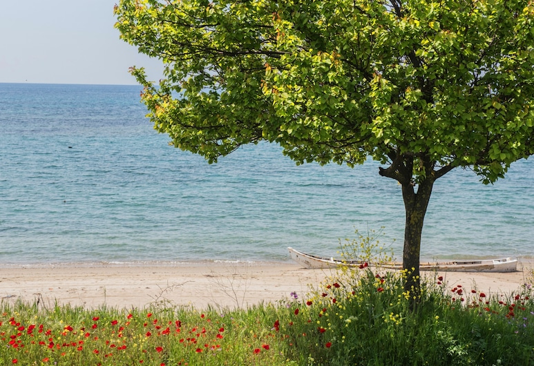 #halu! Modern & Cozy Seafront Villa , Nea Propontida
