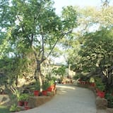 Családi négágyas szoba, kilátással a kertre - Nappali rész