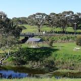 Vista al parque