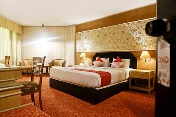 Pekanbaru bölgesindeki OYO 805 Hotel Dyan Graha resmi