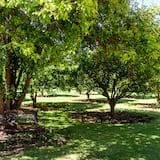 Vistas al jardín