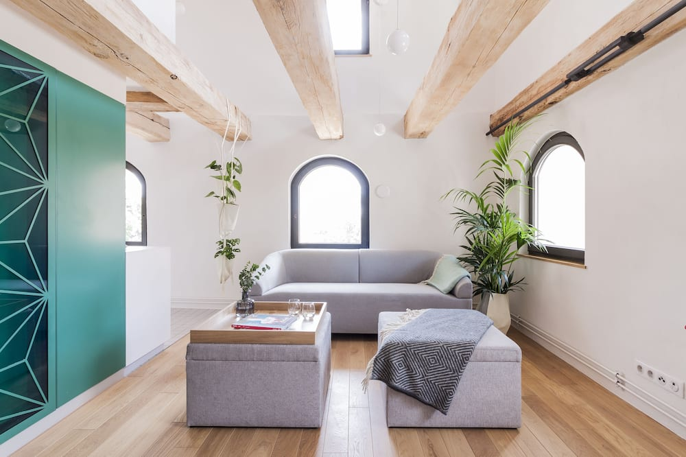 Apartament typu Premium, widok na rzekę (1) - Salon