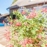 家庭平房, 私人浴室, 庭園景 (SPA & Sauna) - 泳池