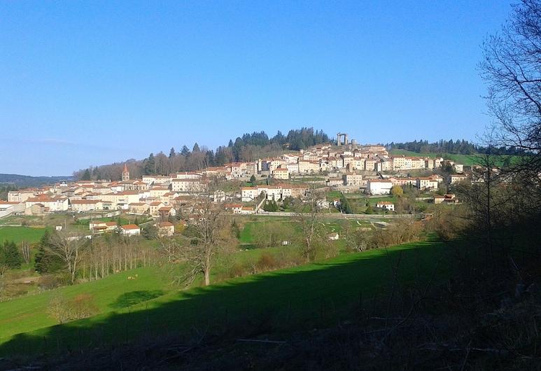 Le Domaine De Fonteline - Anemone, Allegre