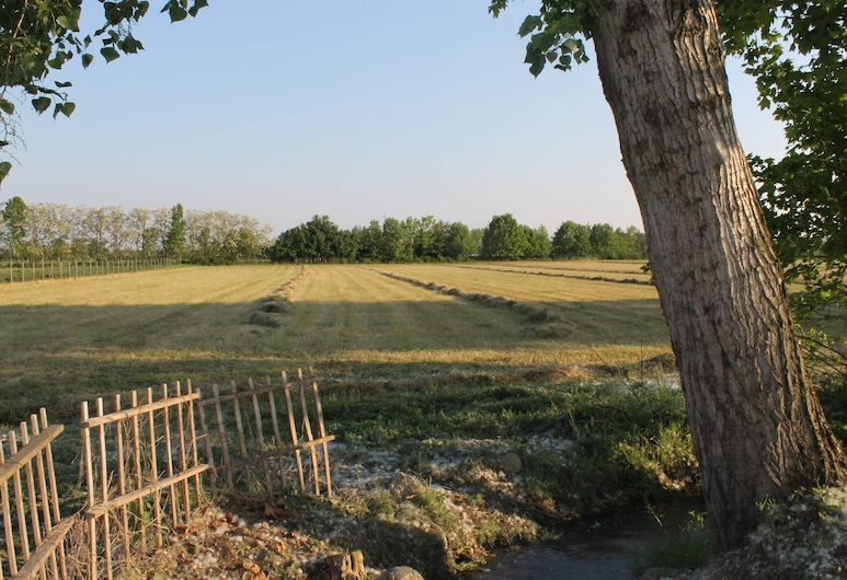 Comeback, Stezzano, Property Grounds