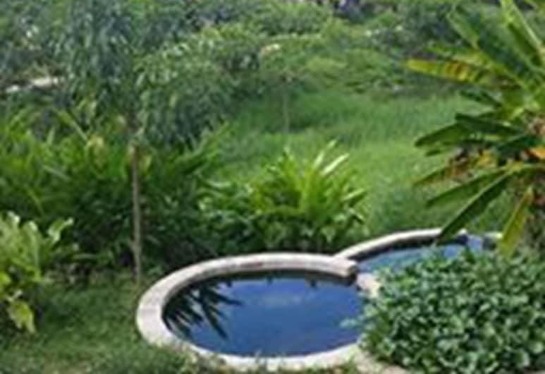 Los Susurros Casa, Palenque, Alberca al aire libre
