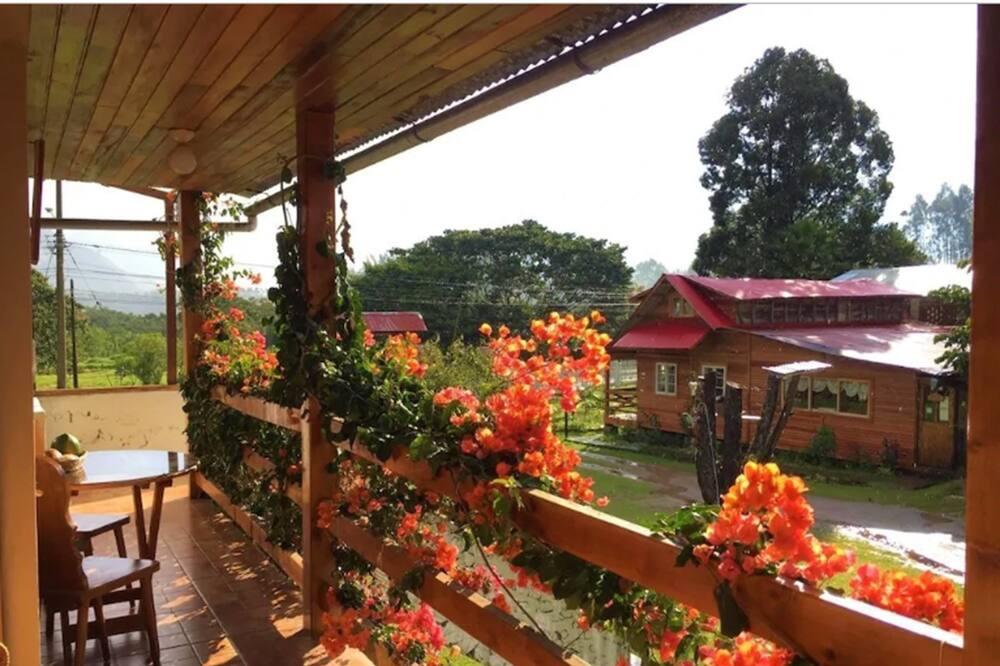 Стандартний тримісний номер, з видом на сад - Територія готелю
