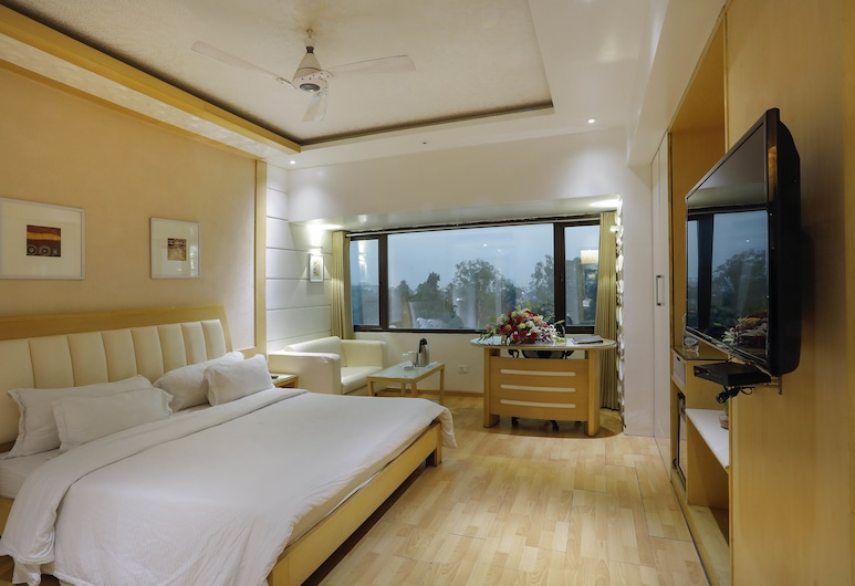 Shivoy Hotel, Gorakhpur, Deluxe Double Room Single Use, City View, Guest Room