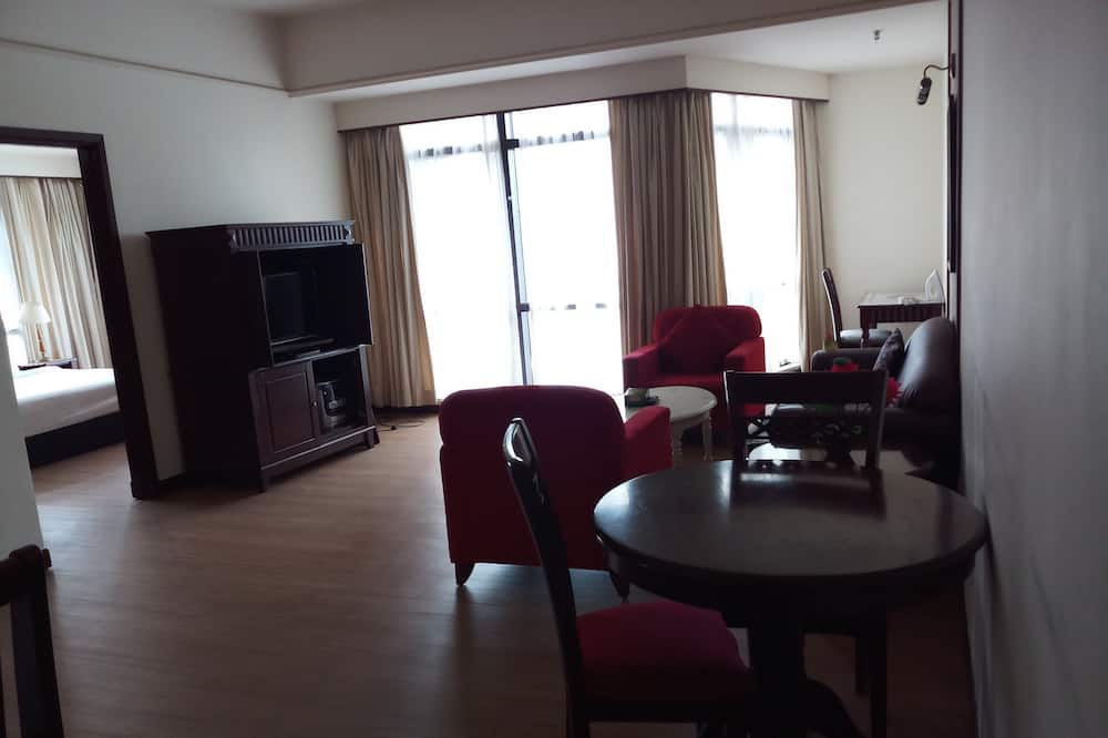 Family Apartment - Living Area