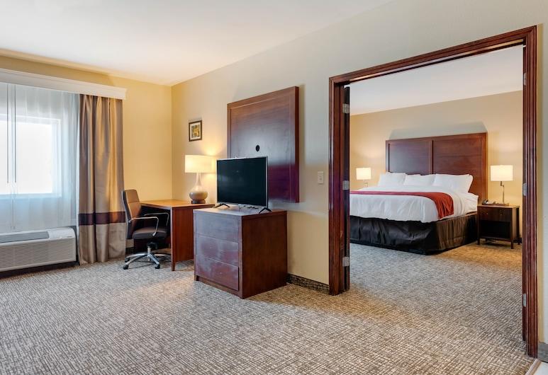 Comfort Inn & Suites, Michigan City, Süit, 1 En Büyük (King) Boy Yatak ve Çekyat, Sigara İçilmez, Oda