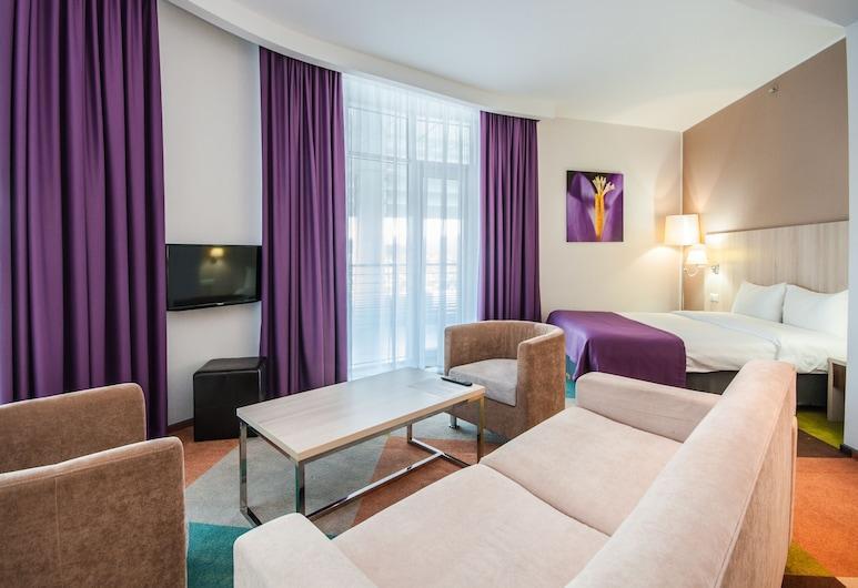 歐梅加天狼星酒店, Adlersky, 普通套房, 客房