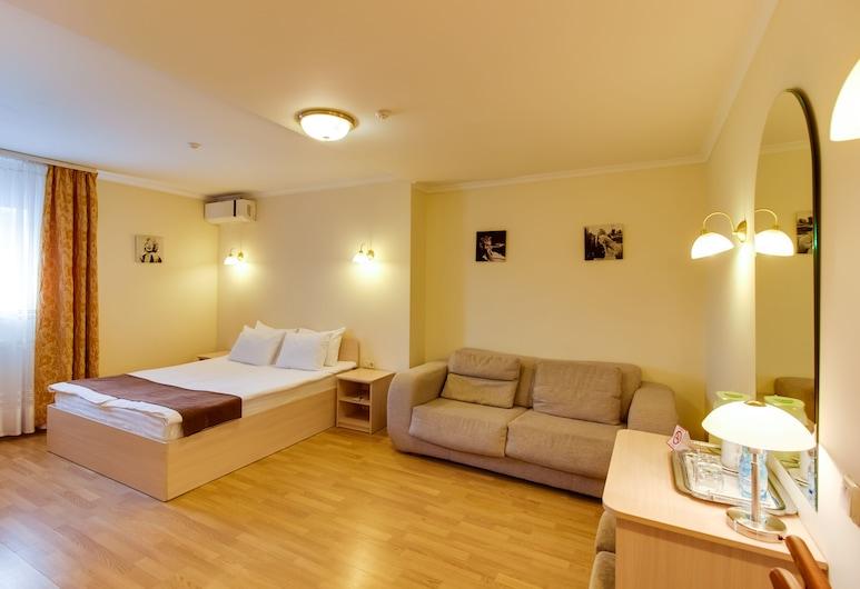 Hotel Galaktika, Lviv, Žemesnės liukso klasės numeris, Svečių kambarys