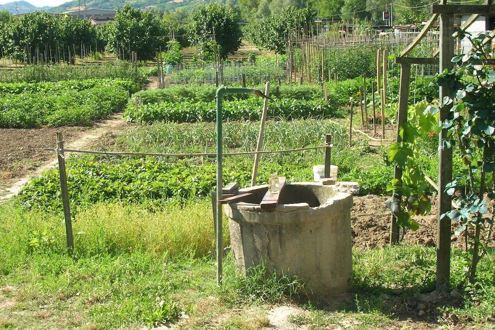 Dobbeltrom (Camera 1) - Utsikt mot hage