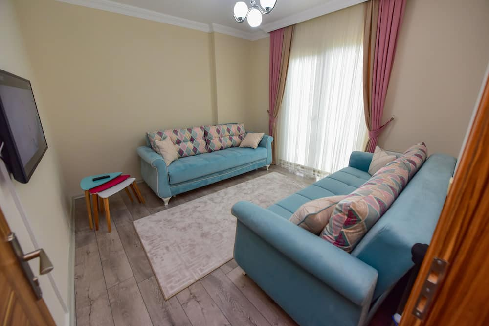 Basic Apartment, 1 Bedroom - Living Area