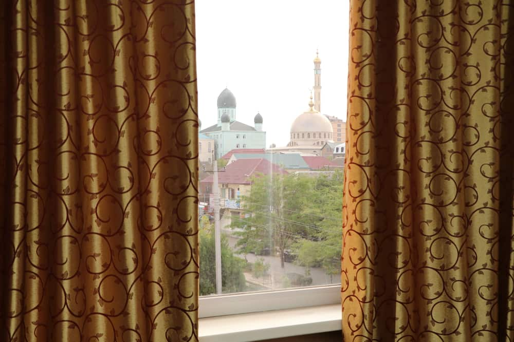 Premium Twin Room - Guest Room View