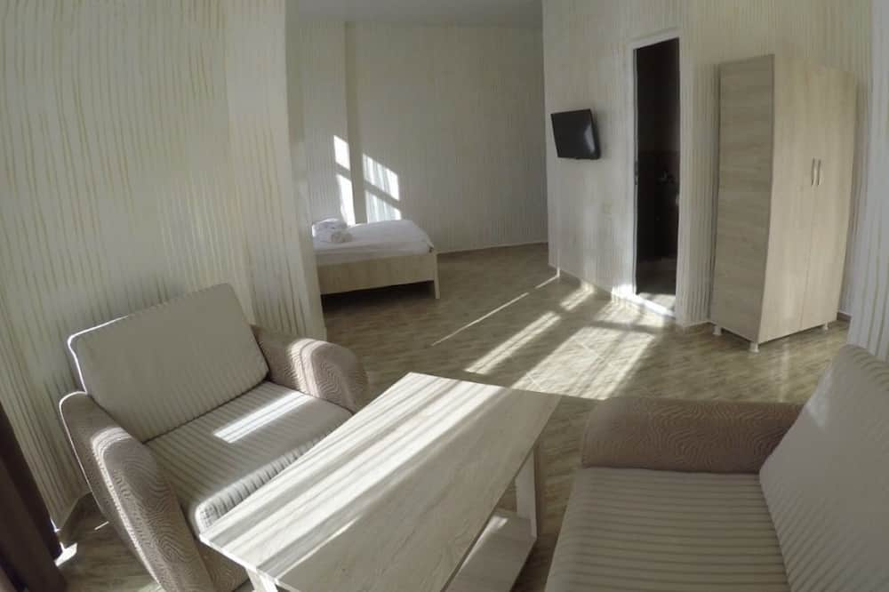Standard Room - Living Area