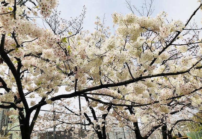 勝屋酒店, 大阪, 花園