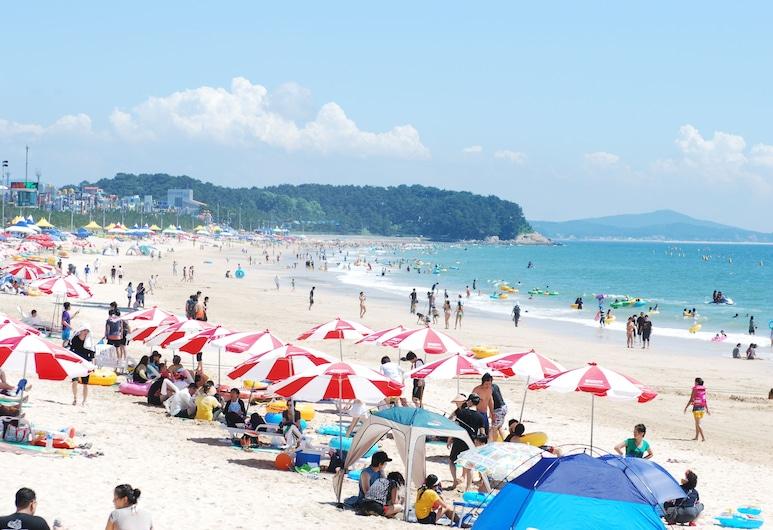 Zenith Hotel, Boryeong, Beach