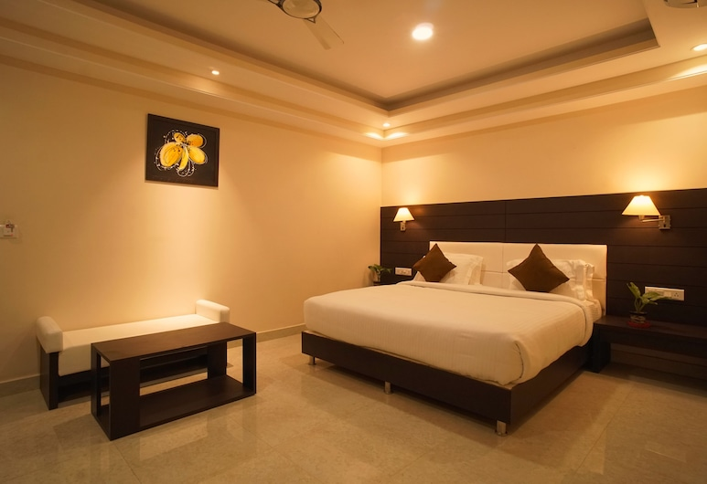 Hotel Shree Kanha Residency, Allahabad, Deluxe-herbergi, Herbergi