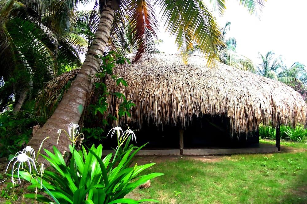 Habitación individual - Vista al jardín