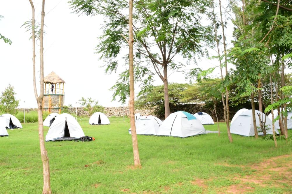 Basic Tent - Room
