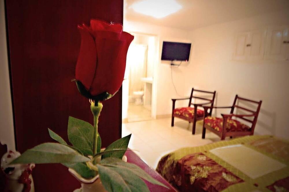 デラックス 4 人部屋 - 客室