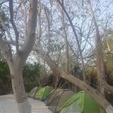 Camping - Tent Only - Вибране зображення