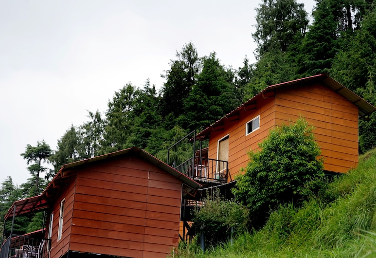 Aaroham By Aamod, Dalhousie, Property Grounds